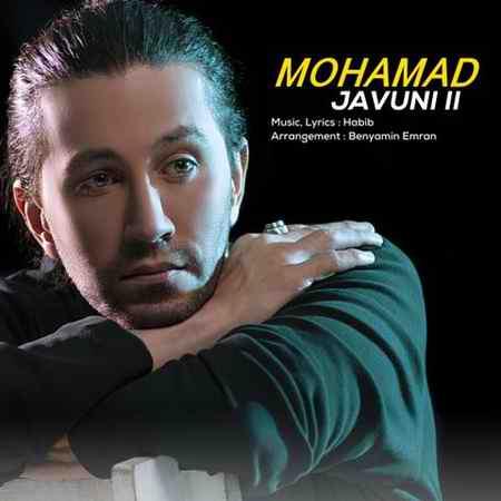 دانلود آهنگ جوونی 2 محمد محبیان + متن و بهترین کیفیت