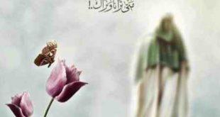 دانلود آهنگ میلاد آقام صاحب زمونه از محمدحسین شفیعی