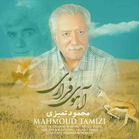 دانلود آهنگ محمود تمیزی آهوی فراری + متن و کیفیت عالی