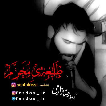 دانلود مداحی کربلایی رضا زارعی طلیعه ی محرم